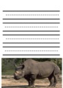 Homeschool Helper Online's Free Rhino Notebooking