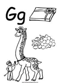 Alphabet Letter G Worksheet
