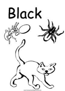 Colors - Black Worksheet