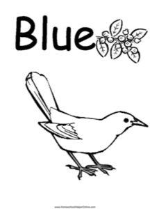 Colors - Blue Worksheet