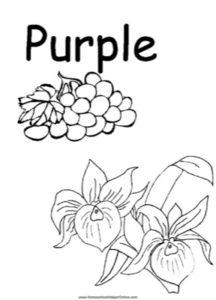 Colors - Purple Worksheet