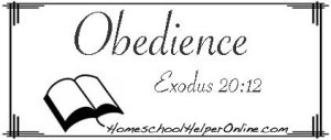Obedience Character Study