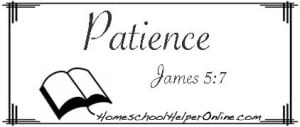 Patience Character Study