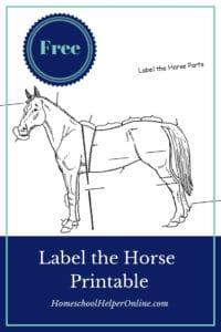 free printable label the horse worksheet