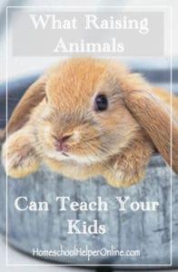 Raising Animals Can Teach your Kids