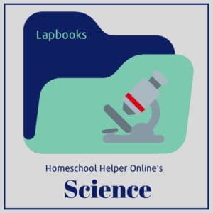A large collection of science lapbooks