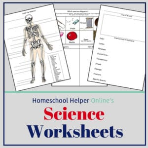 These free science worksheets can be used to enrich the subjects you are already studying