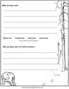 bears worksheet