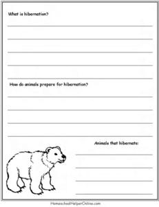 bears : hibernation
