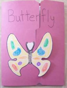 Outside decorations on a Butterfly Lapbook