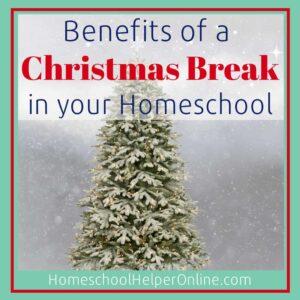 Homeschool Christmas Break