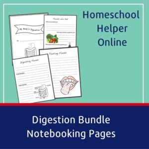 Free printable digestion notebooking