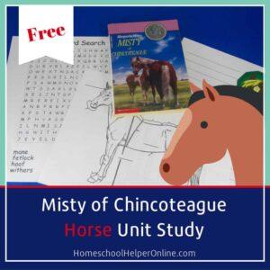 Literature based horse unit study