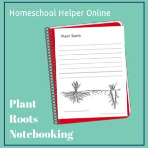 Printable plant roots notebooking page