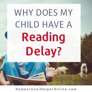 The Connection between Language & Reading Delays
